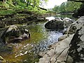 The River Ribble below Stainforth Force - geograph.org.uk - 435709.jpg