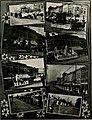 The banyan (1914) (14578856160).jpg
