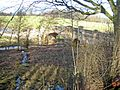 The bridge at Wallington - geograph.org.uk - 675464.jpg