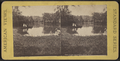The lake, Prospect Park, N.Y, from Robert N. Dennis collection of stereoscopic views 2.png