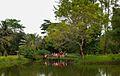 The lake view at Anurima.jpg