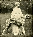 The new book of the dog - a comprehensive natural history of British dogs and their foreign relatives, with chapters on law, breeding, kennel management, and veterinary treatment (1911) (14576962850).jpg