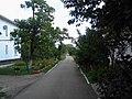 The walkway inside the courtyard. August 2013. - Дорожка внутри двора. Август 2013. - panoramio.jpg