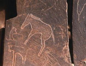 Ksour Range - Neolithic rock engravings near Ain Sefra.