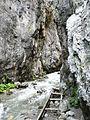 Tiesňavy Prosieckej doliny - panoramio.jpg