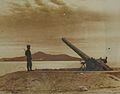 Tiran Guns IMG 0937.JPG