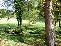 Tomašnica - Izvor Marulja - panoramio (1).jpg