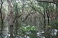 Tonle Sap Lake (9728495299).jpg