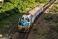 Train In Sunset (232972015).jpeg