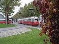 Tram der Wiener Linien (3732163634).jpg