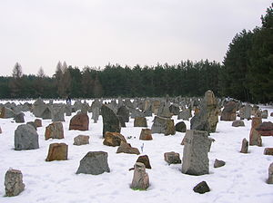 Treblinka's Memorial in Winter.JPG