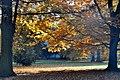 Trebon Wittingau (24745202958).jpg