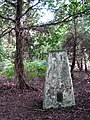 Trig point in Horsford Woods - geograph.org.uk - 971058.jpg