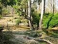 Trijunction @ Wayanad wildlife Sanctuary - panoramio.jpg