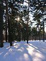 Tsentralnyy rayon, Chelyabinsk, Chelyabinskaya oblast', Russia - panoramio (66).jpg