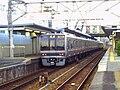 Tsukaguchi Station Home.jpg