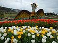 Tulip (106).JPG