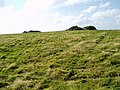 Tumuli or ancient burial mounds on Week Down - geograph.org.uk - 581314.jpg