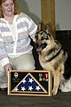 US Navy 051006-N-2115M-028 Military Working Dog Dak sits with his new owner Marka Seacrest while receiving his shadow box at the conclusion of his retirement ceremony.jpg