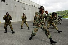 US Navy 100510-N-9643W-429 Members of the Jamaica Defense Force participate in the practical portion of the Marine Corps Martial Arts program with Marines embarked aboard Swift (HSV 2).jpg