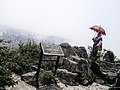 Umbrellas come in handy all year round! (8058075247).jpg