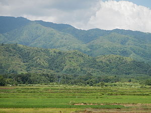 Caraballo Mountains - Image: Umingan Lupaojf 4785 08