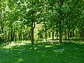 Un coin du Parc de Sceaux.JPG