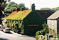 Under the foliage there's a pub! - geograph.org.uk - 513895.jpg