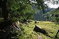 Unterer Landschitzsee0529.JPG