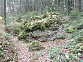 Vaals-Geologisch monument Sterrenstenen Vijlenerbosch (1).JPG