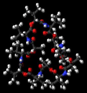 Valinomycin - Image: Valinomycin 3D ball