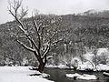 Valjevske planine - zapadna Srbija - reka Gradac - mesto Ćelije - ispod manastira Čelije 1.jpg