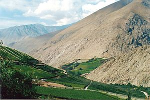 Norte Chico, Chile - Agriculture in Elqui valley