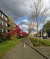 Van Boshuizenstraat.jpg