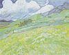 Van Gogh - Berglandschaft hinter dem Hospital Saint-Paul.jpeg