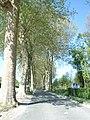 Vaux le Vicomte (1331895728).jpg