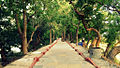Vedanthangal Bird Sanctuary pathway.JPG