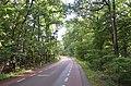 Veluwe - 2015 - panoramio (28).jpg