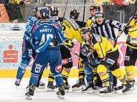 Vienna Capitals vs Fehervar AV19 -148.jpg