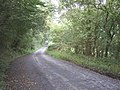 View down the steep hill on road - geograph.org.uk - 945538.jpg