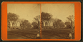 View of a street with pedestrians and carriages, from Robert N. Dennis collection of stereoscopic views.png