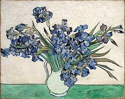 Винсент ван Гог: Irises