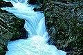Vintgar Gorge (35772792666).jpg