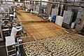 Visita a fábrica da Bauducco (49705303683).jpg