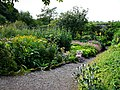 Wallington walled garden - geograph.org.uk - 944453.jpg
