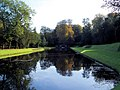 Water gardens in Autumn. - geograph.org.uk - 493292.jpg