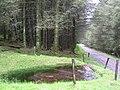 Water reserve - geograph.org.uk - 112720.jpg