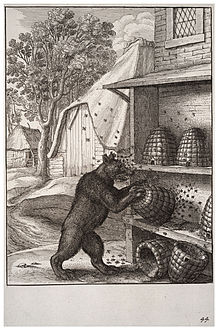 Bibliographie de L'Ours dans OURS 220px-Wenceslas_Hollar_-_The_bear_and_the_honey