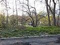 West - panoramio (6).jpg