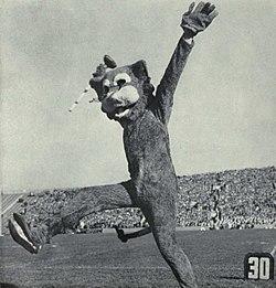 Willie the Wildcat (1961).jpg